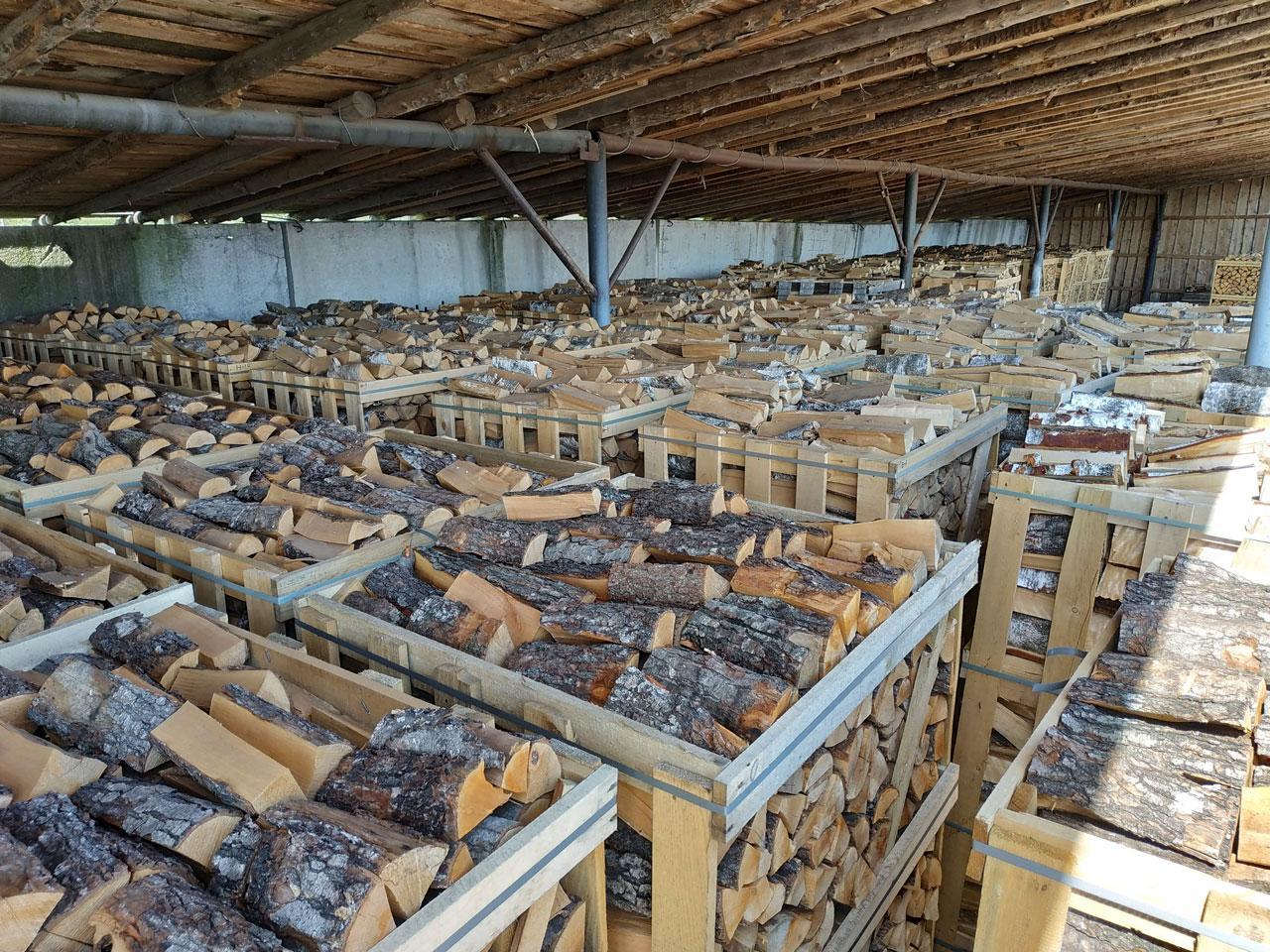 stammholz kaufen