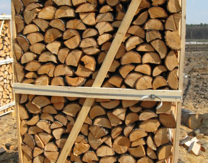 Brennholz aus Erle, natürliche feuchtigkeit