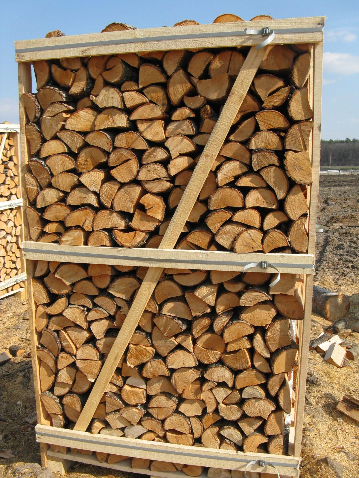 feuerholz kaufen
