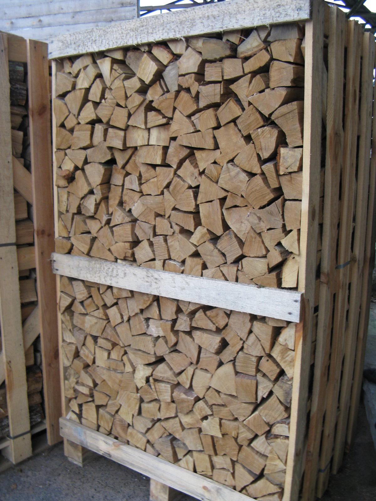 buchenholz kaufen
